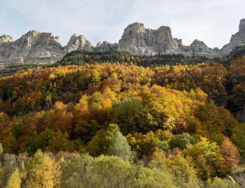 ¿Qué hacer en Pirineos en verano y en invierno?